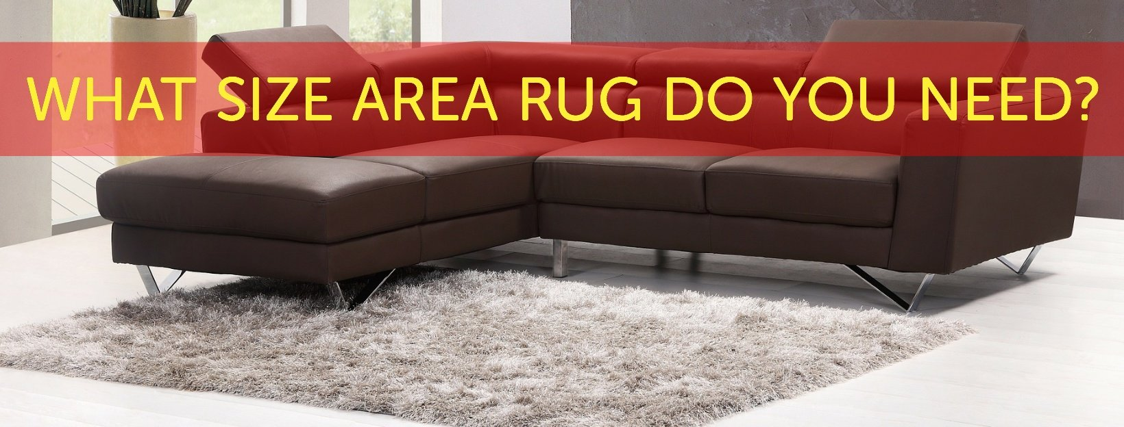 What Size Rug Do You Need Carpet Depot